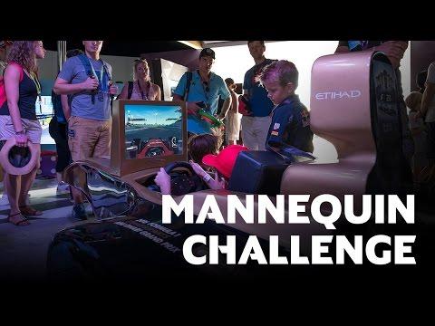 Mannequin Challenge | 2016 FORMULA 1 ETIHAD AIRWAYS ABU DHABI GRAND PRIX