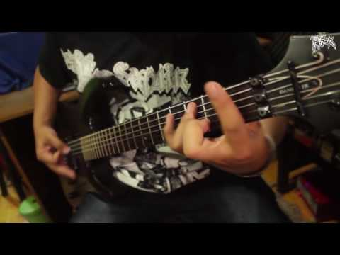 Interfectorment - Coprophaghy to excerements Dissaray ( Guitar Playthrough )