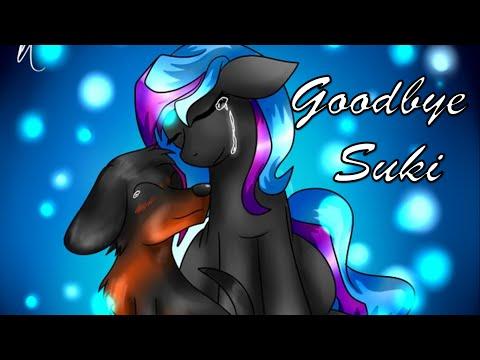 Goodbye Suki
