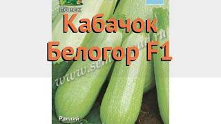 Кабачок обыкновенный Белогор F1 (belogor f1) 🌿 обзор: как сажать, семена кабачка Белогор F1