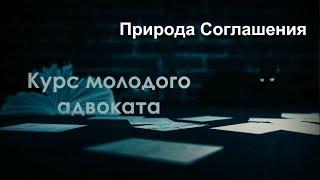 видео Порядок образования адвокатской палат