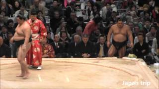 正代 vs 松鳳山の取組。2016大相撲春場所2日目。