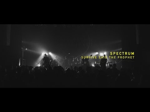 Survive Said The Prophet - Spectrum | Official Live Music Video