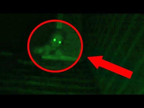 5 Scary 'Rake' Sightings Caught on Camera