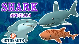 Octonauts - Undersea Missions to Discover Sharks | Shark Week Special