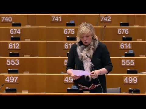 Hilde Vautmans 01 Mar 2018 plenary speech on the financing of terrorism