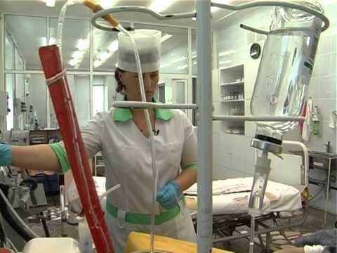 подводный, крабами работа медсестры в гродно вакансии анимированные картинки