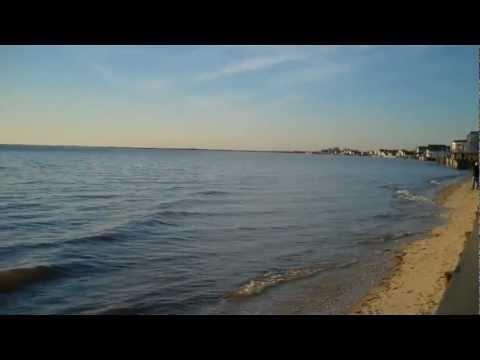Delaware Bay's Edge at Fortescue