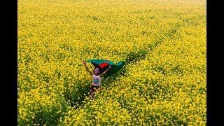 Download Video আমার বাংলাদেশের একতারা সুর - মামুন || Amar Bangladesher Ektara Shur - Mamun MP3 3GP MP4