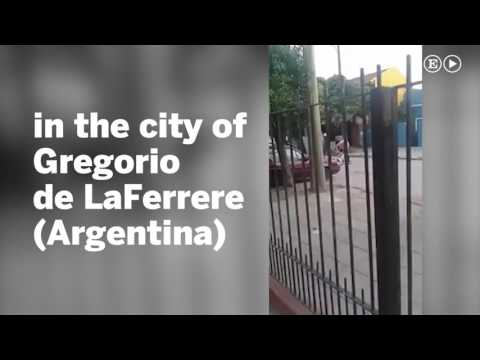 Men who beat woman to death in Argentina given suspended sentence   EL PAÍS English Edition