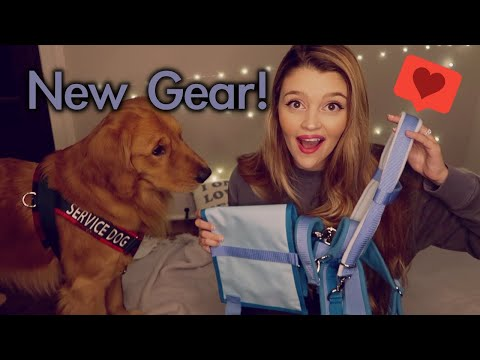 NEW GEAR From BeardAndGolden! Unboxing & First Impression | HARNESSES & CAPE