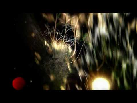 Lylac (Helios Remix)