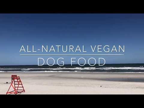 VEGAN DOG FOOD RECIPE   VET APPROVED!