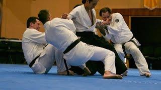 Mori Shihan 7th Dan 2015 Brisbane Yoshinkan Aikido 20th Demo