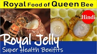 Royal Jelly : A Royal Food Of Queen Bee | Unbelievable Health Benefits
