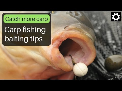 Carp Fishing Baiting Tips.