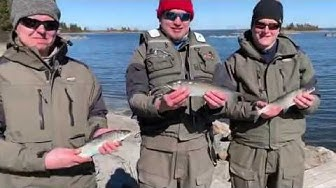 Kevät on tullut ja siika syö - Siianongintaa merellä - Pohjapaino - Siikatapsi - Kastemato - Eumer