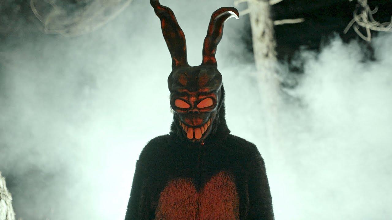 Contra Anıl Piyancı Tavşan Youtube