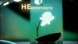 """Телеканал ОРТ Программа """"Теория невероятности"""""""