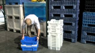 Grape Crates - Stackable Containers for Agriculture - TranPak