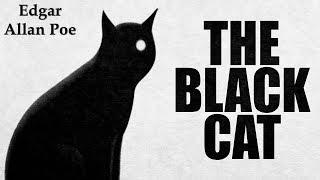 texto em inglês com áudio e tradução the black cat