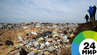 Утилизация мусора: в России долю обработки отходов повысят с 9 до 60% - МИР 24
