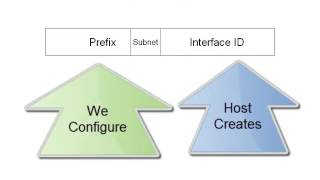 4. Static IPv6 Address Assignments