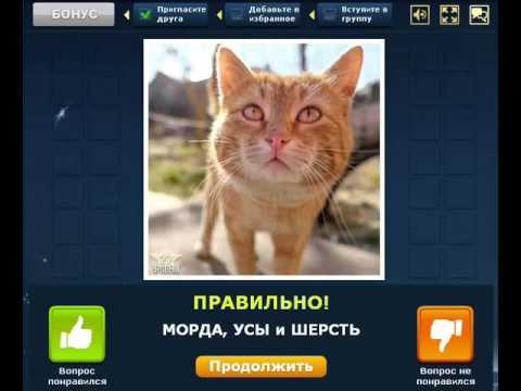 Игры Маджонг флеш игры на OnlineGuru