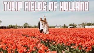 TULIP FIELDS NETHERLANDS   KEUKENHOF GARDENS   AMSTERDAM DAY 1