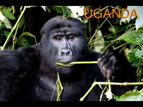 Viaje Uganda