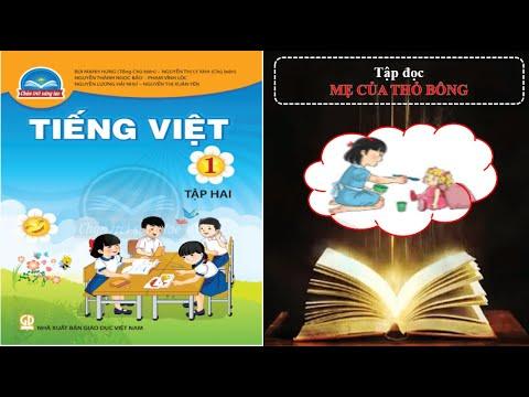 Tập đọc: Mẹ Của Thỏ Bông/Tiếng Việt Lớp 1, Tập 2/ Chân trời sáng tạo/ Tuần 25, Bài 1