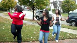 Delta Sigma Theta Sorority, Inc. Glen Ellyn Area Alumnae VOTE 2010 Step.MOV