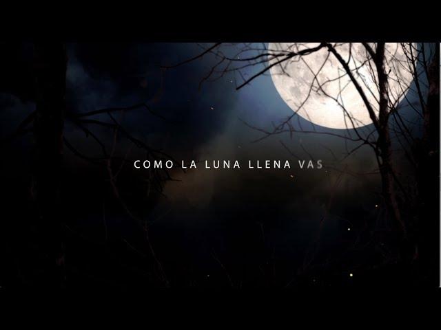 Alberto Plaza - Como la luna llena vas (VideoLyric)