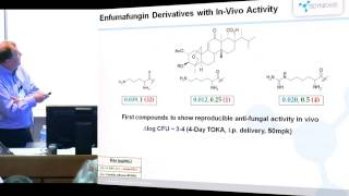 The discovery of new, orally-active inhibitors of ß-1,3-glucan synthesis as anti-fungal agents
