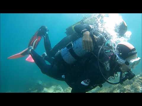 Scuba diving in Algeria