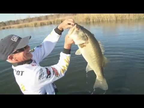 Catching Bass On Decker Lake In Austin, Texas