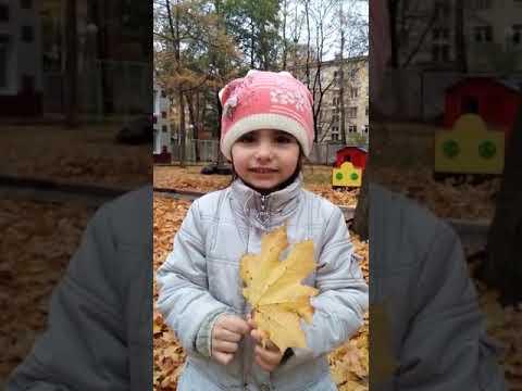 Изображение предпросмотра прочтения – КристинаХрипунова читает произведение «Осенний вечер...Небо ясно» И.С.Тургенева
