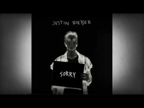 Justin Bieber sorry full lyrics video song