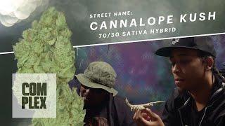 "Motor City High ""Cannalope Kush"" Marijuana Strain | Ep. 3"