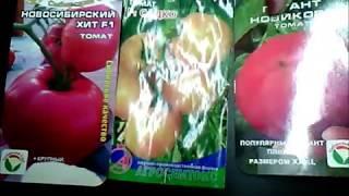 Ужас!Такие томаты я никогда больше сажать не буду!!!
