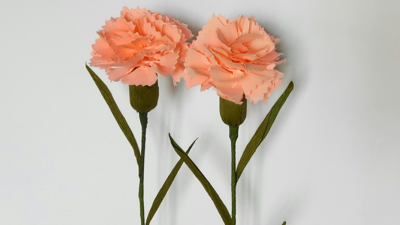How To Make Carnation Flower From Crepe Paper Youtube