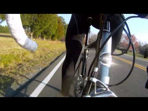 Performance Cycling Leg Warmers Review from Performance Bicycle