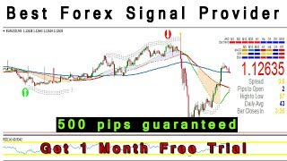 Best Forex Signal Provider | Get 1 Month Free Trial [500 pips guaranteed]