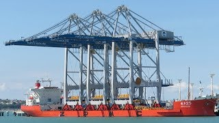 Ports of Auckland Gets New Container Cranes - New Zealand - 2018