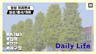[짧은영상] 일상 / 봄 / 여름 / 영상 프리랜서 /…
