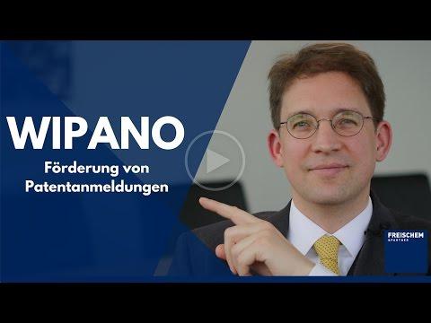 WIPANO - Förderung Von Patentanmeldungen - Patente Basiswissen