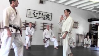 Karate Combinations