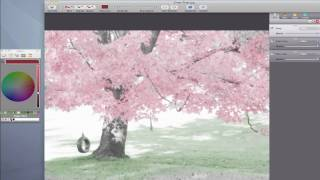 Hand Tint - Create Luminescent Pink Trees