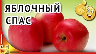 Яблочный Спас | Видео поздравление с Яблочным Спасом