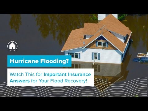 What You Need to Know About Insurance After Hurricane Harvey